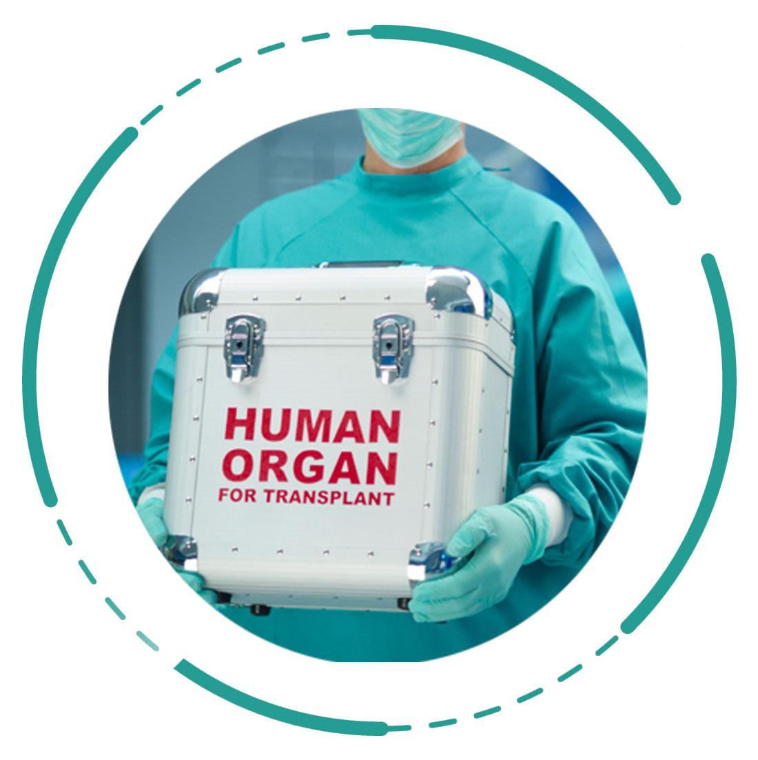 Organ-Transplant-Icon